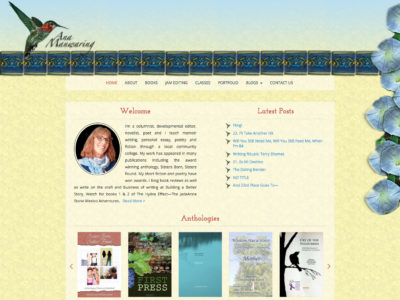 Web Design Portfolio item - Writer website - complete custom design and development using provided artwork.  We used WordPress as a CMS and built several WordPress plugins including book carousel and custom post types for Books, Classes, and Portfolio.